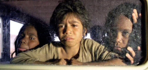 rabbit-proof fence film review
